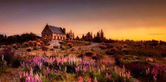 New Zealand / Pixabay